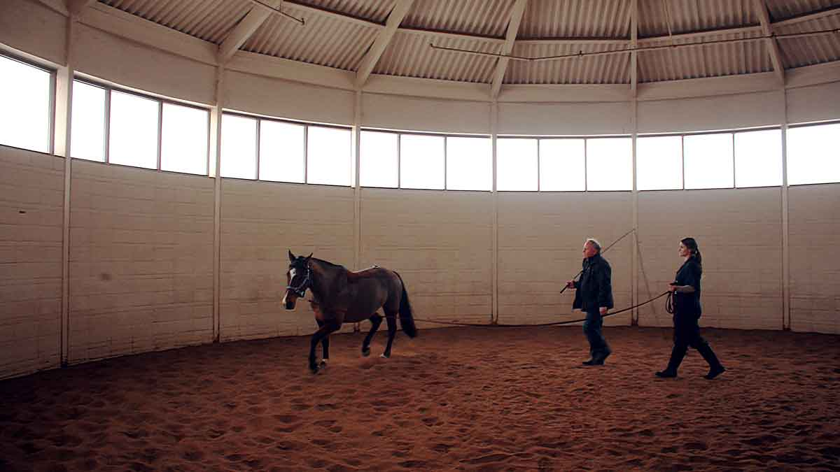 PICTURED LEFT: Dr. Keegan (left) instructs veterinary student Kaitlyn Galos (right) on proper techniques of a lunging trial.