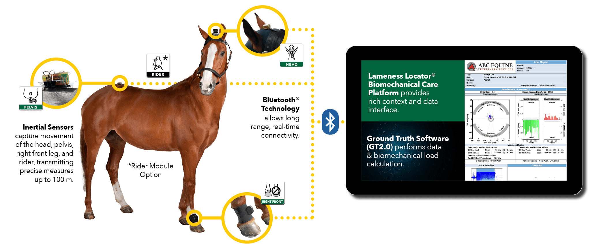 how the equinosis q works - objective horse lameness evaluation