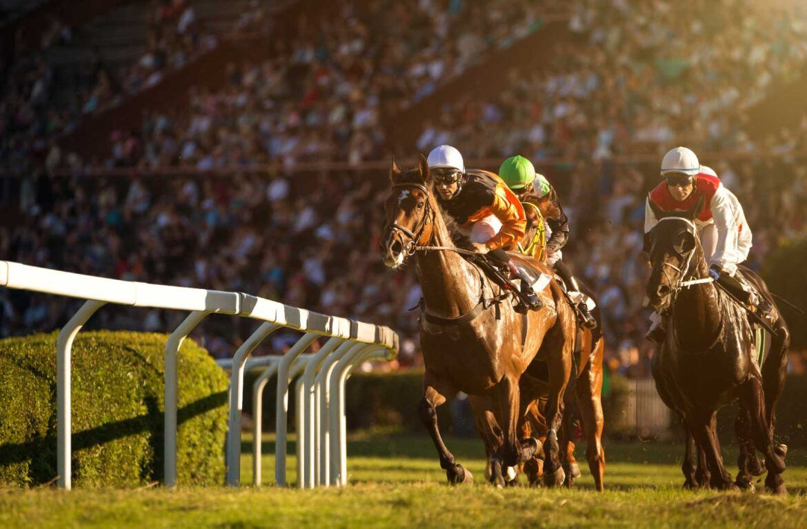 Lameness Measurement: Principles of Implementation in Horse Racing | Equinosis, LLC Veterinary Advisory Council responds to NAARV letter
