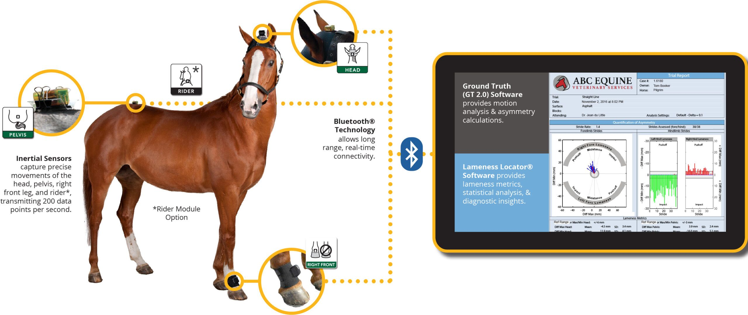 equinosis Q how it works horse with tablet
